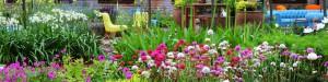 plantation-etoile-showcase-garden