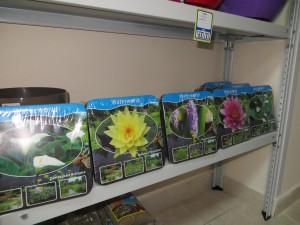 Наборы для водных растений