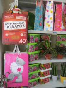 Подарочные пакеты (2)