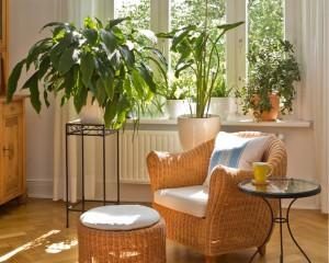 Sonníges Wohnzimmer in warmen Farben