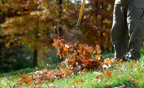 Осенние работы на огороде