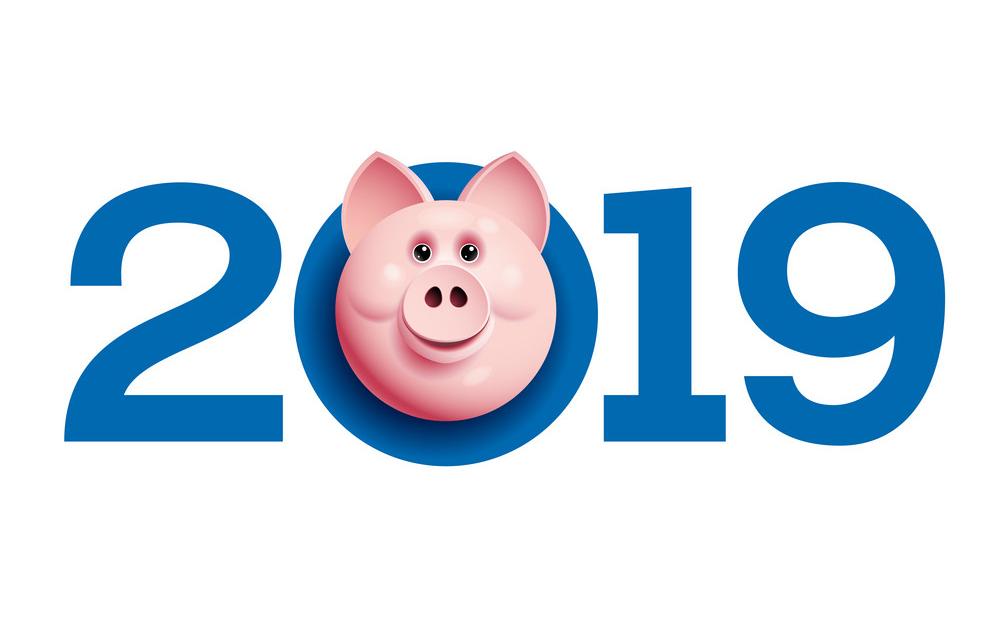 Символ 2019 года уже в продаже