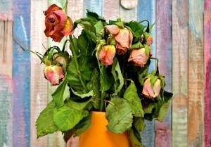vjalye-cvety