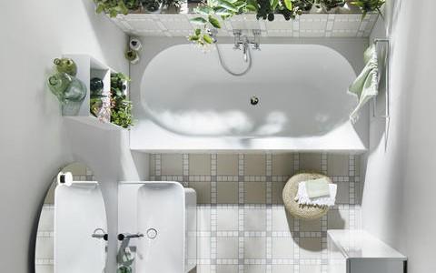 Растения для ванной