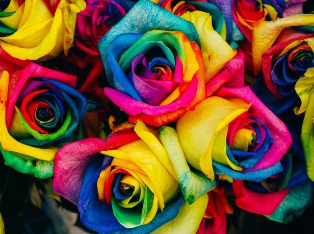 Какие розы дарят женщинам