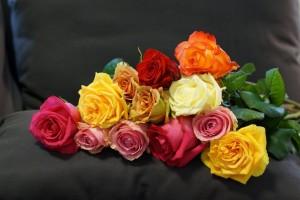 rozy-raznye